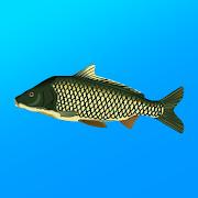 Реальная Рыбалка. Симулятор рыбной ловли v1.14.3.666